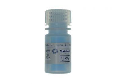 NMP22 Urin-Stabilisator 1x1 ml