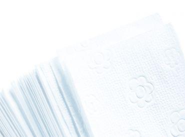 Fripa towels bright white 25 x 23cm 20 x 150 Sheets 1x3000