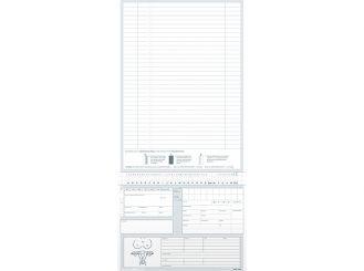Karteitaschen Gynäkologie ALPHAnorm DIN A5 1x1000 Stück