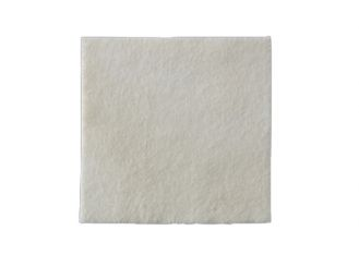 Biatain® Alginate 10 x 10 cm 1x10 Stück